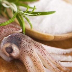 Кальмар/использования в кулинарии/польза и вред.