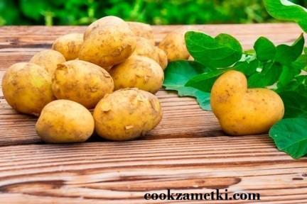 Все о картофеле.