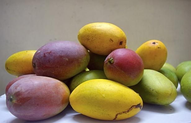mangoes-11
