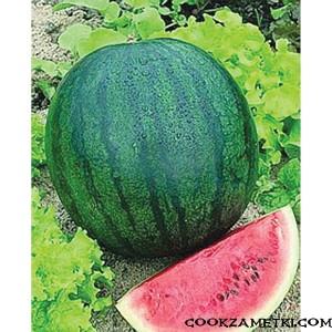 33940-Sugar-Baby-Watermelon