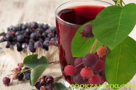 Вино из ирги – 3 рецепта в домашних условиях.