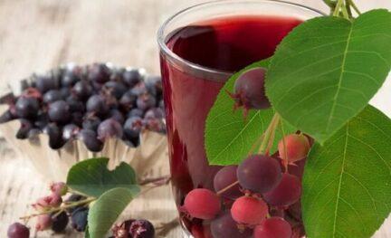 Вино из ирги – 3 рецепта в домашних условиях
