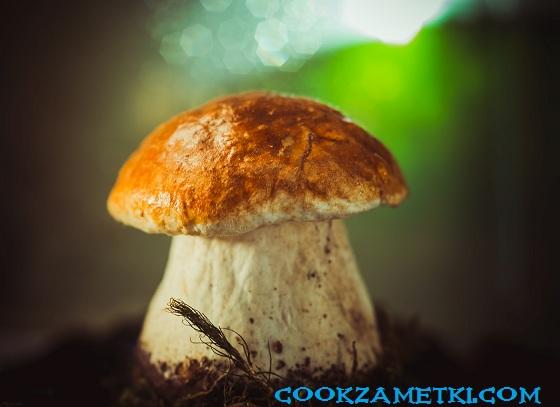 Как и сколько варить белые грибы.