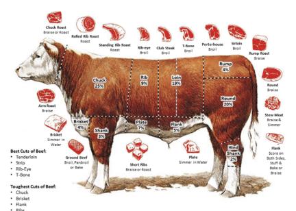 Все о говядине