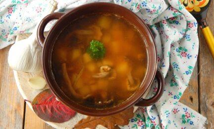 Грибной суп из свежих опят