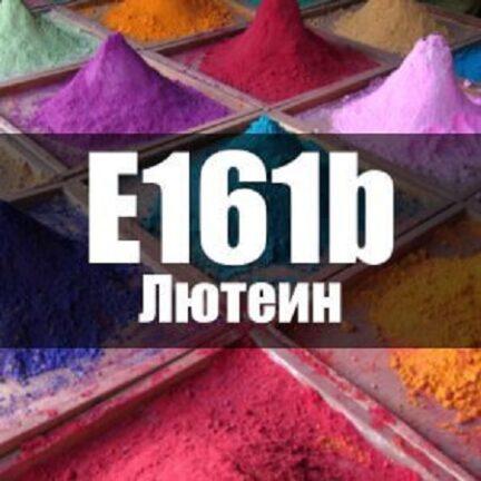 Е161B